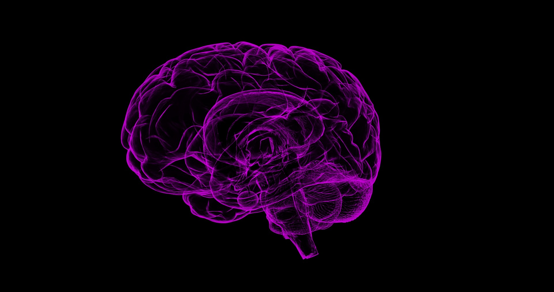El cerebro humano ha de ejercitarse